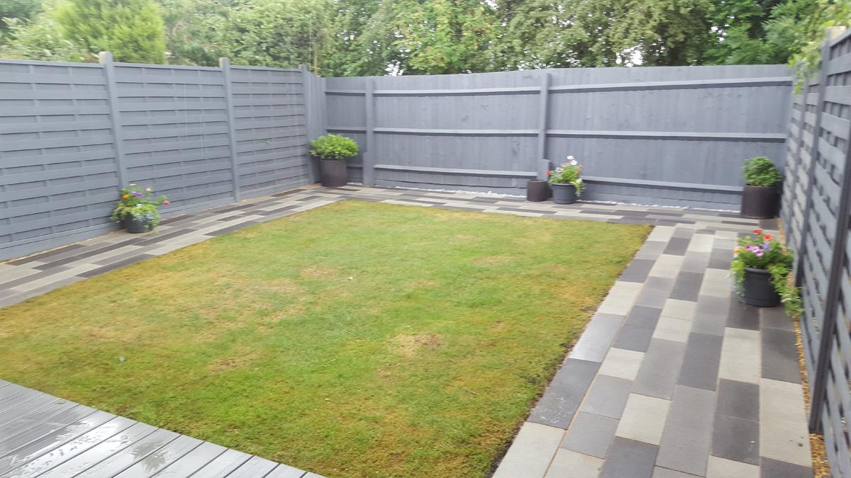 New garden 6