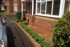 Minature hedge